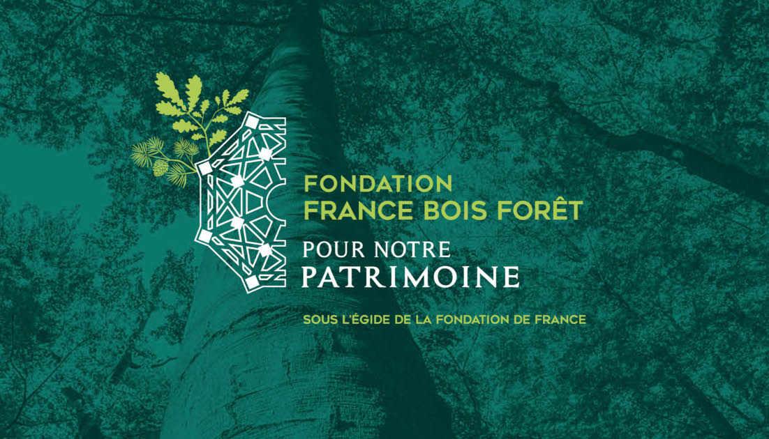LA FONDATION FRANCE BOIS FORÊT POUR NOTRE PATRIMOINE
